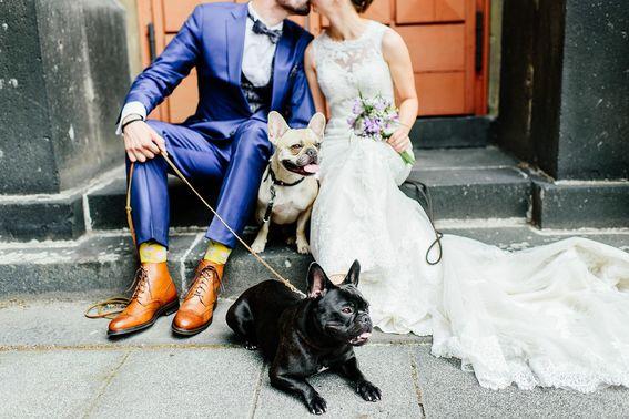 Ehepaar mit Hunden bei der Hochzeit – gesehen bei frauimmer-herrewig.de
