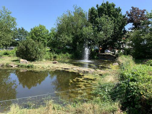Garten Eden Industrial Hochzeit Location 01 – gesehen bei frauimmer-herrewig.de