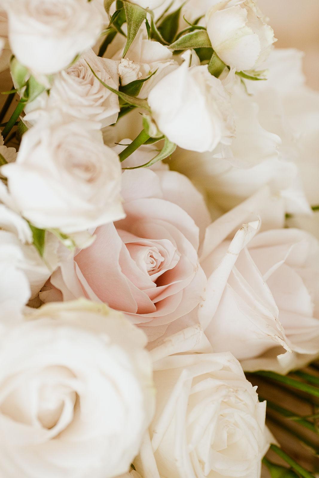 Weiße Rosen – gesehen bei frauimmer-herrewig.de