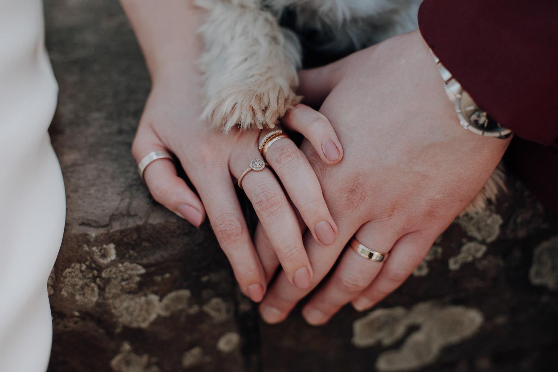 Hochzeitsfotoshooting mit Hund – gesehen bei frauimmer-herrewig.de