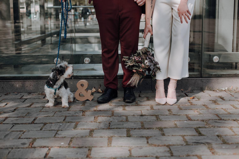 Brautpaar mit Hund in Köln – gesehen bei frauimmer-herrewig.de