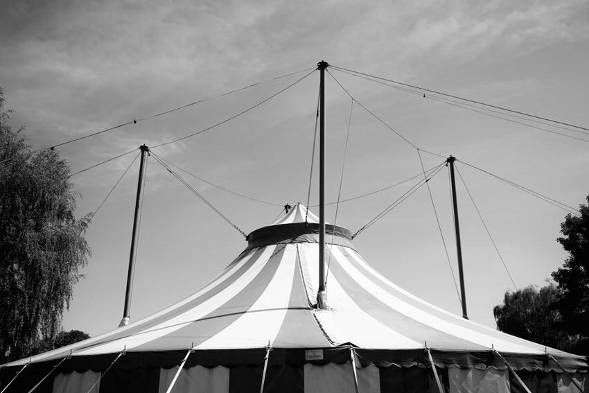 Hochzeit im Zirkuszelt 3  – gesehen bei frauimmer-herrewig.de